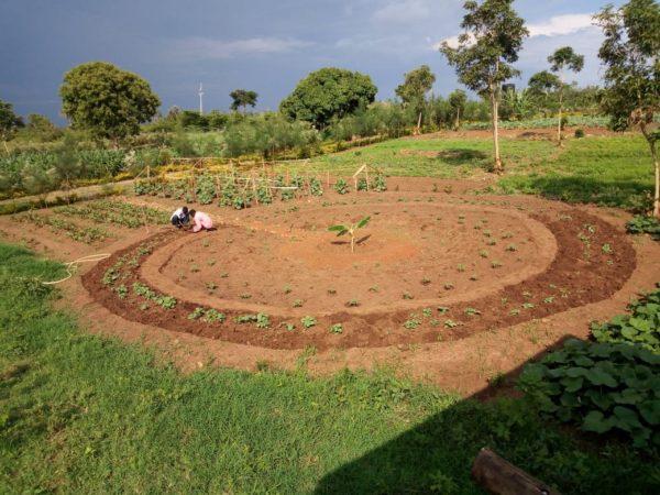 Circle garden plot